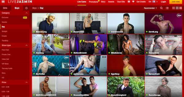 LiveJasmin Gay Cam Review